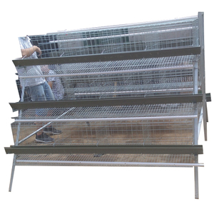 Poultry Equipment Automatic Layer Hen Farm Cage with Clip