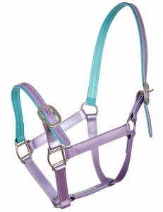 Arabian Colorful PVC Horse Halter for Horse Racing