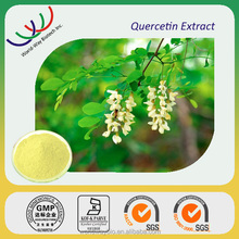Free sample alibaba China supplier hot sale high quality quercetin powder, natural antioxidant plant exract 95% quercetin