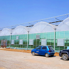 large scale multi-span poly greenhouse with hydroponic technology