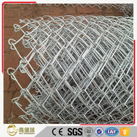 HIgh quality chain link diamond wire mesh/iron wire mesh fence roll