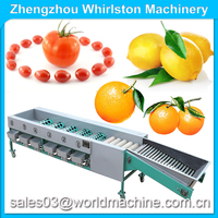 Fruit Sorting Machine/apple Grading Machine/orange Sortor On Sale ...