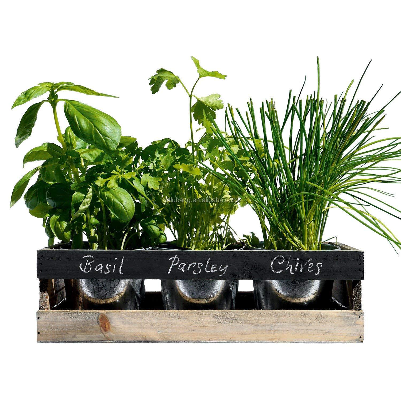 Indoor Herb Garden Kit Kitchen Wooden Windowsill Planter Box   Buy ...