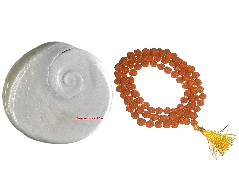 IndianStore4All 1.5-2 Inches Approx Big Gomti Chakra Natural Original Gomti Chakra & free Rudraksha Mala 6 mm