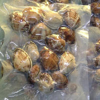 Top Quality Baby Clams With Shell for Sale