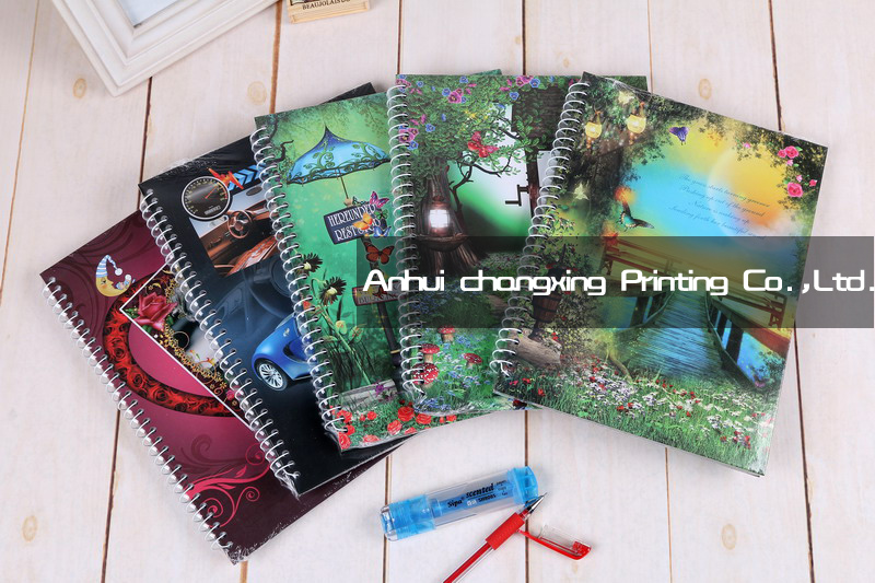 Spiral notebook diary/notebook diary