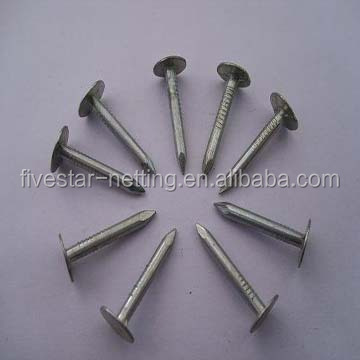 Stainless Steel Nails, Stainless Steel Nails Suppliers And Manufacturers At  Alibaba.com