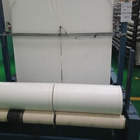 Accept customer order green,white pp fabric roll,any size you want pp roll for farmer used,strong quality pp fabric for agricult