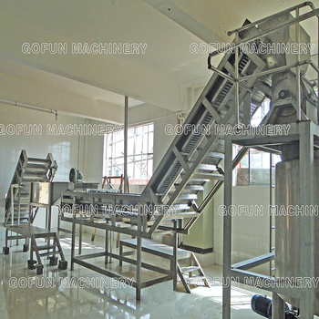Dried fruit and vegetable production line