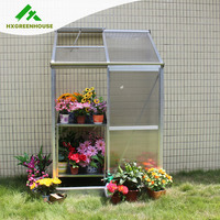 Low cost halls popular lean-to plastic cover mini indoor greenhouse for tomato flower for sale HX64312