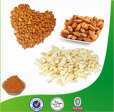 Amygdalin98% Bitter almond extract powder/Apricot kernel extract