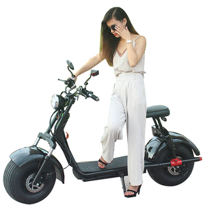 2019 New Recommend YIDE CITYCOCO 1000w 60v12ah 2000w eec approved electric scooter with CE approved