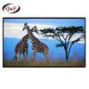 16:9 150 inch fixed frame projector screen with matte white fabric