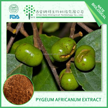 High quality pygeum bark extract and pygeum africanum extract 2.5%