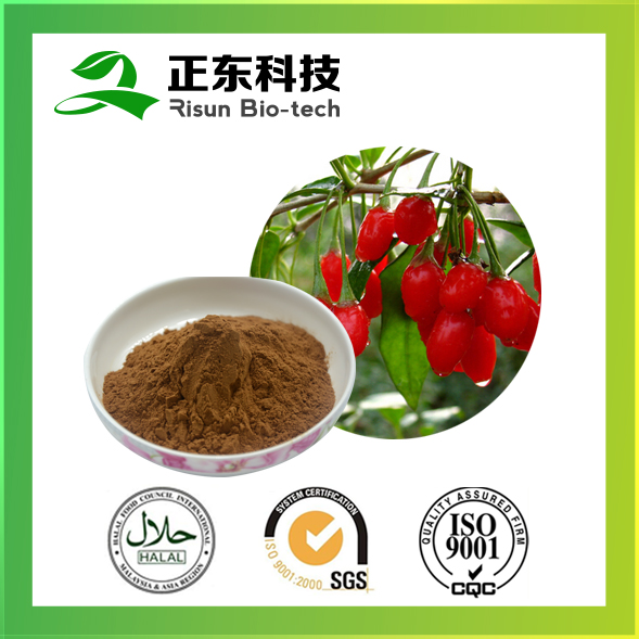 Powder Form Wolfberry Extract 50% Polysaccharides