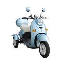 48 V 800 W Cheap Best Adult Electric Tricycle for Sale