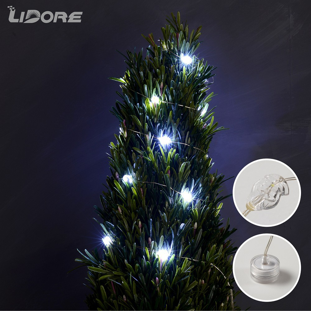 LIDORE Battery Operated Outdoor Led