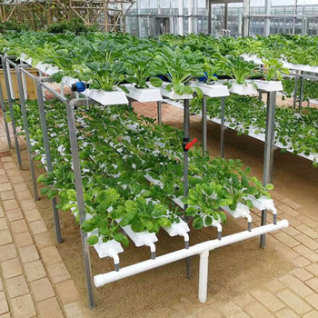 Greenhouse Gutter Hydroponic Growing Systems Nft Gully - Buy Vertical Hydroponics Growing System,Plastic Upvc Tube For Hydroponics,Nft Pvc