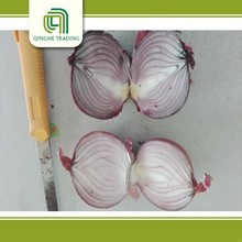 cheap lowest price fresh red onion oman muscat supplier manufacturer distributos big red onions with great price
