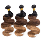 Factory price cheap brazilian hair bundles with lace closure, most popular ombre color human hair weft