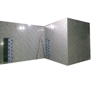 Heat Insulation Blast Freezer Cold Room For Onion