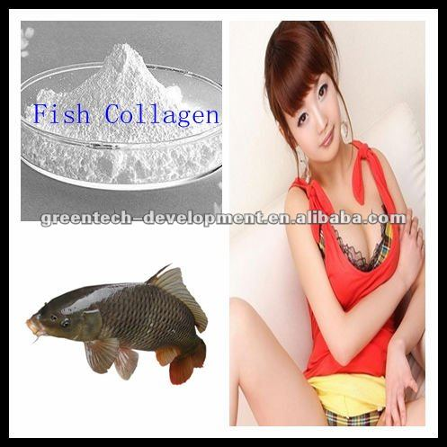 Hot Sell and Cheaper nutrational products-Fish Collagen 90% Type I