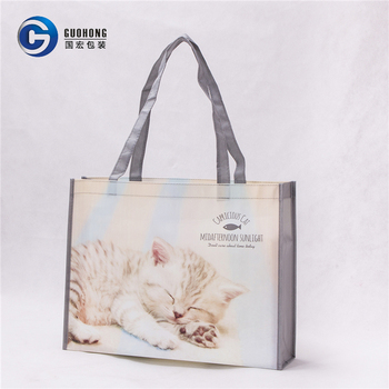 High Quality Recyclable Shopping Use Laminated Pp Non Woven Promotional Bag Print