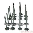 engine valve for HOLDEN