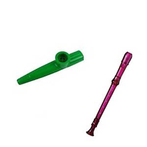 My First Recorder / Kazoo Pack -BPA FREE Purple Translucent Recorder w/Green Kazoo