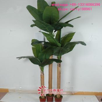 Sjxjs 02 All Kinds Of Wooden Banana Tree Wedding Decoration