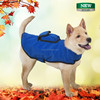 2015 new launch DCT-30 FIR dog sauna pet products importers