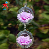 double hanging glass ball vases with two hooks
