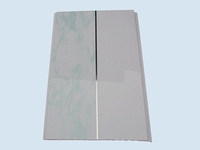cleaning PVC Ceiling Panels USA