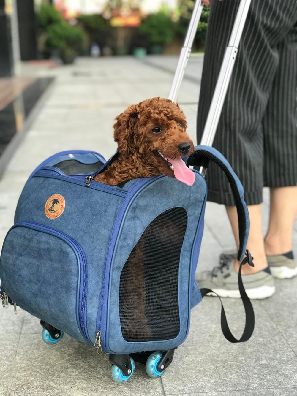Airline Approved pet carrier backpack, pet travel rolling backpack stroller