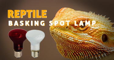 50w 75W 100w Basking lights tube halogen heating lamp bulb pets long heat lamps for reptiles lizard turtle snakes bearded dragon