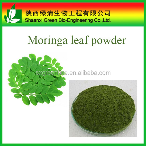 Organic Moringa Leaf Powder Buyers With Free Sample