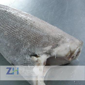 Wholesale Frozen Oilfish Frozen Iqf Bulk Fish Seafood Oilfish