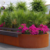 Large Vertical Planter  Corten Steel Flower Pot Corten Steel Garden Edging Round Corten Steel Planter Planter Boxes