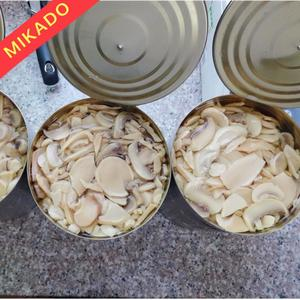 fresh pack canned mushroom champignons king oyster in water canned mushroom in brine
