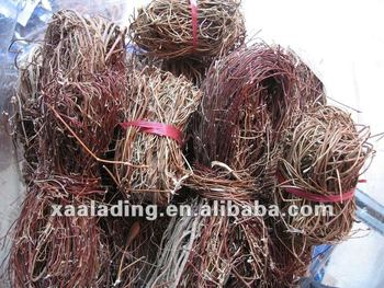 Abrus Cantoniensis Hance Extract