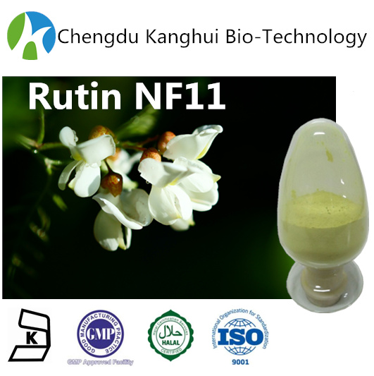 Medicinal herbs Chinese Herbal Cosmetic Rutin Powder NF11 250249-75-3 plant extracts