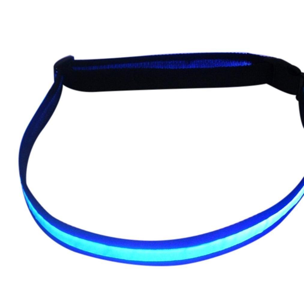 LED Running Waist Belt Vibola Glow Belt Reflective Buckle Running Belt High Visibility (Blue)