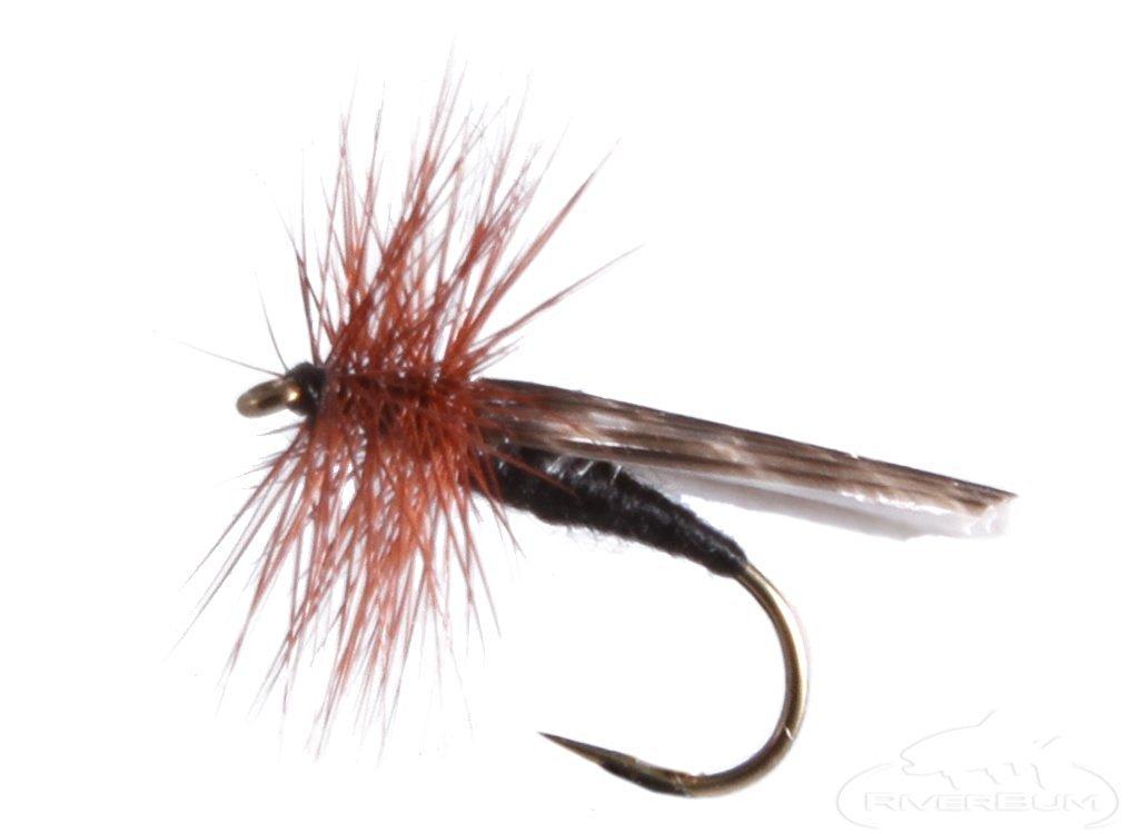 RiverBum Mottled Caddis, Black Fishing Fly Mottled Caddis, Black, Pack of 3