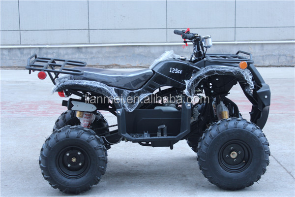 Cheap Four Wheelers For Sale >> Atv Quad Bike Cheap Gas Go Karts For Kids/adults With Ce/epa - Buy New Gas Go Kart For Sale,Cool ...