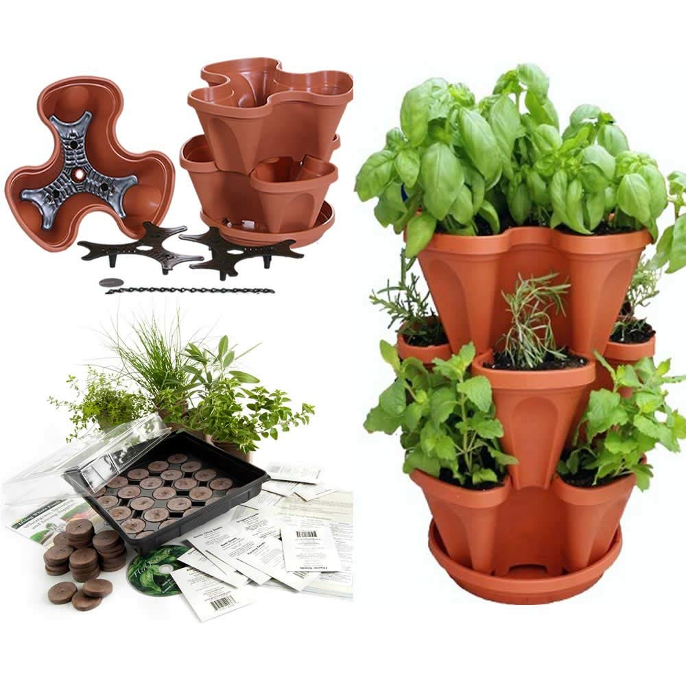 Stackable Planter + Medicinal Herb Garden Starter Kit- Start Growing Fresh Medicine Herbs - Seeds: Burdock, Echinacea, Fever Few, More - Includes TerraCotta Color Stacking & Hangable Garden Planter