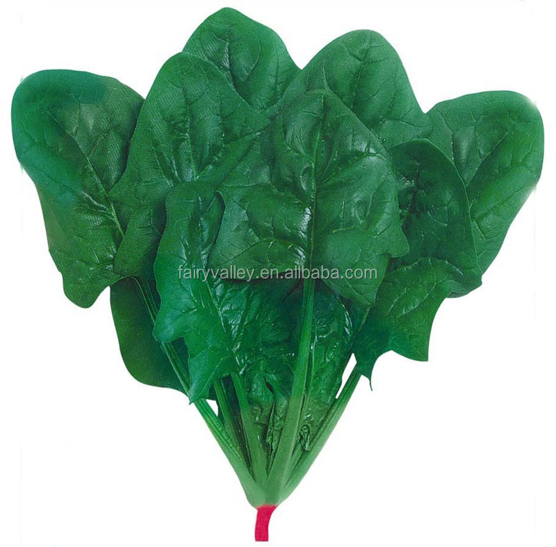 Big Leaves Spinach Seeds For Sale