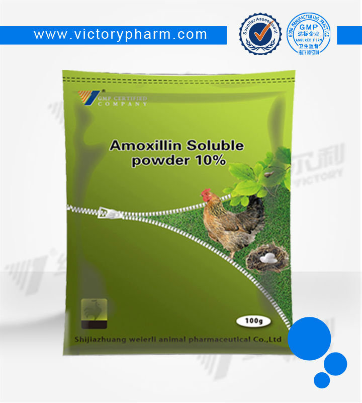 Top quality Veterinary drug companies amoxicillin