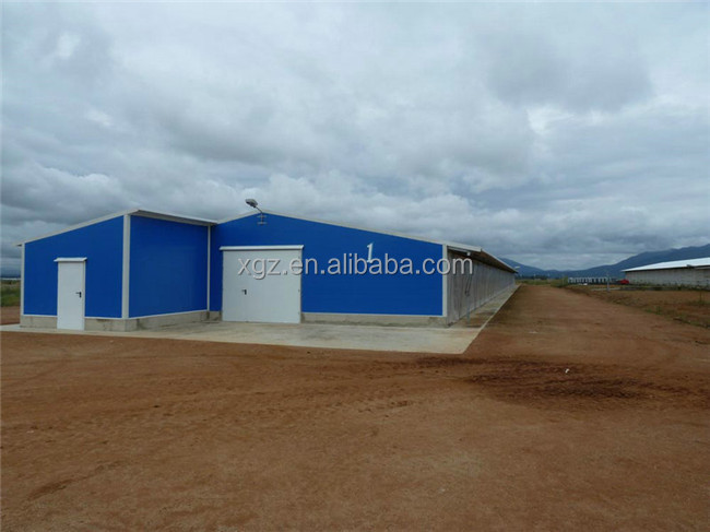 Professional high quality good poultry house design for Nigeria