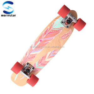 22 Inch Cruiser Retro Style Cheap Wood Deck Skateboard
