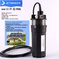 JETMAKER 12V dc mini solar water pump with lift rate 30m and flow rate 6L/M for agriculture